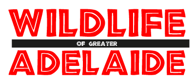 Wildlife of Greater Adelaide Logo